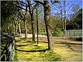 April Parc Natural Freiburg Germany - Master Landscape Rhine Valley Photography 2014 Landgut Mundenhof - panoramio (37).jpg