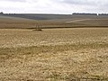 Arable land south of Stonehenge - geograph.org.uk - 32263.jpg