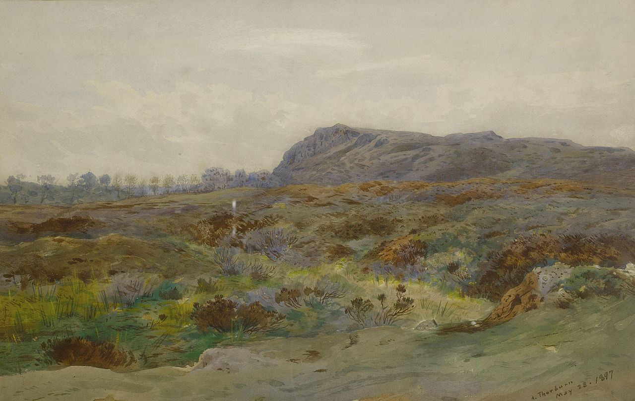 Арчибальд Торберн Пейзаж вересковой пустоши 1897.jpg