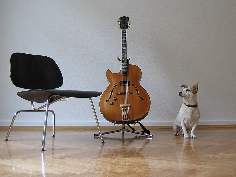 File:Archtop guitar & dog - Whats it sound like.jpg