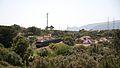 Areia, Vale da Rosa, 2013.05.15 (8753879946).jpg