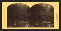 At the mouth of the Flume, looking down, Franconia Mountains, N.H, by James W. Queen & Company.png