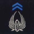 Attribut fourreaux-train parachutiste.png
