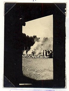 <i>Sonderkommando</i> photographs Photographs taken at the Auschwitz concentration camp
