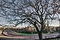Autodromo Dino e Enzo Ferrari -.jpg