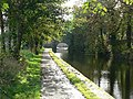 Autumn by the Canal - geograph.org.uk - 265291.jpg
