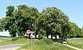 Avenue from Poznan Sypniewo to Koninko (2).JPG