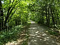 B 83, Northern Rail Trail, Boscawen NH.jpg