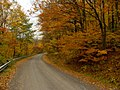 Backroad down the escarpment.jpg