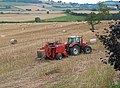 Baling time - geograph.org.uk - 515414.jpg