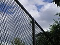 Ball stuck at the top of the fence (276357367).jpg