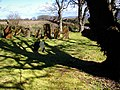 Ballaugh Old Church churchyard - geograph.org.uk - 787324.jpg