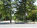 Balmaceda-O'Higgins, Buin, Chile - panoramio.jpg