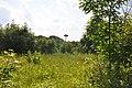 Baltā stārķa ligzda Nr.2994, Sidgunda, Mālpils pagasts, Mālpils novads, Latvia - panoramio (1).jpg