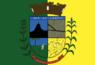 Bandeira-ibiporã.png