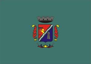São Leopoldo - Image: Bandeira Sao Leopoldo