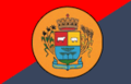 Bandeira sananduva.png
