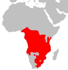 karta över Afrika med ett stort område i rött, som täcker större delen av kontinenten söder om ekvatorn