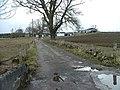 Barevan Farm - geograph.org.uk - 361176.jpg