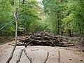 Barrier in the Hambach forest 11.jpg