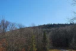 Barton Knob - View from North.jpg