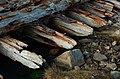 Beach closeups Barns Ness, 2014 (15428327736).jpg