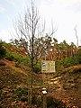 Bech, Halifax-monument Marscherwald (106).jpg