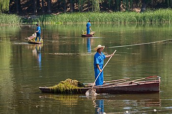Beijing China Woman-cleaning-West-Lake-01.jpg