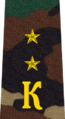 Belarus Military Academy—Internal Troops Department—07 Cadet-Ensign rank insignia (Camouflage).png