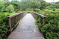 Bellingrath Gardens and Home 2018 Footbridge over Mirror Lake 2.jpg