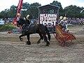 Ben Hur Race horses.JPG