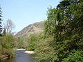 Benmore Botanic Garden (475876315).jpg