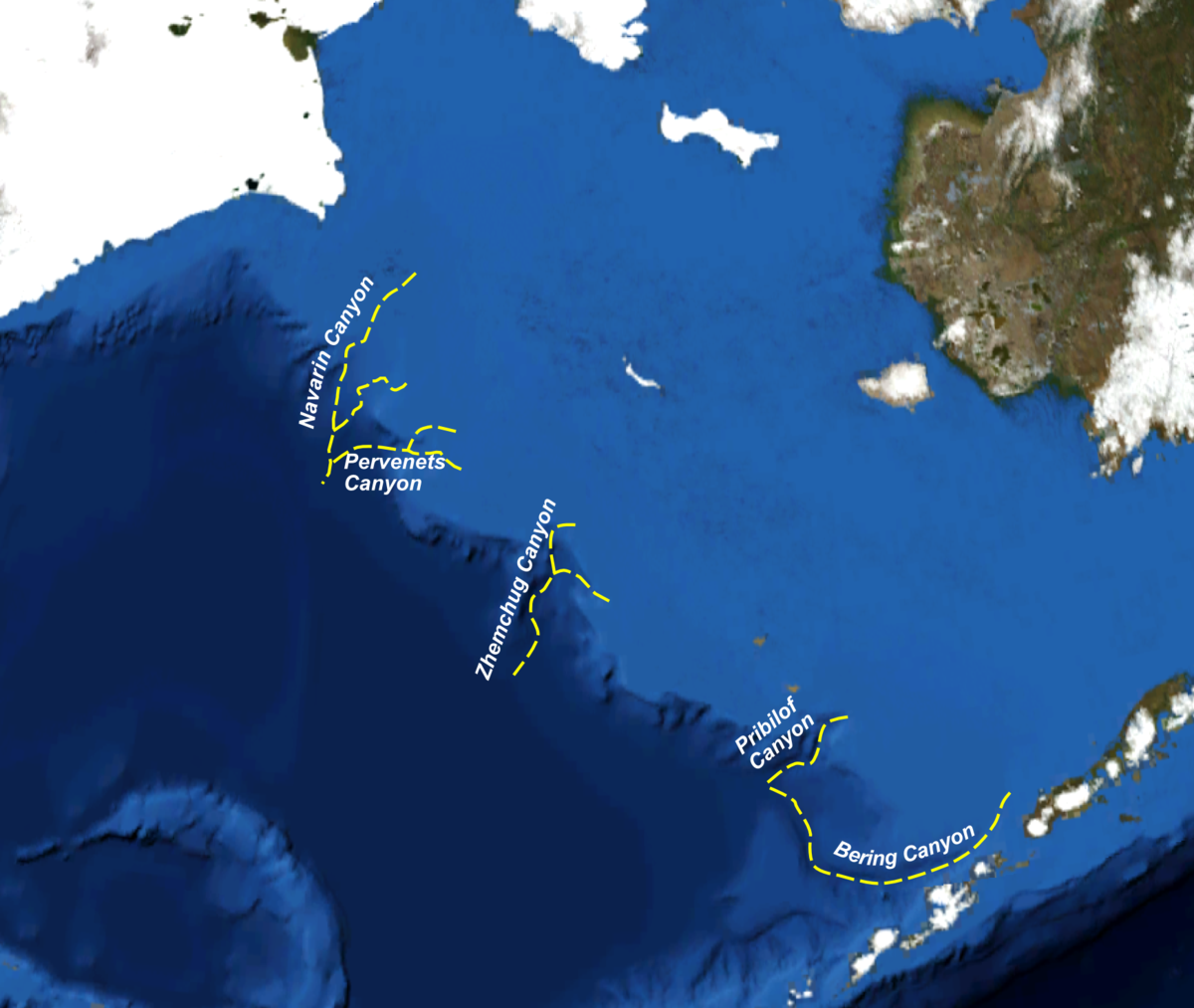 Bering Sea Islands Map