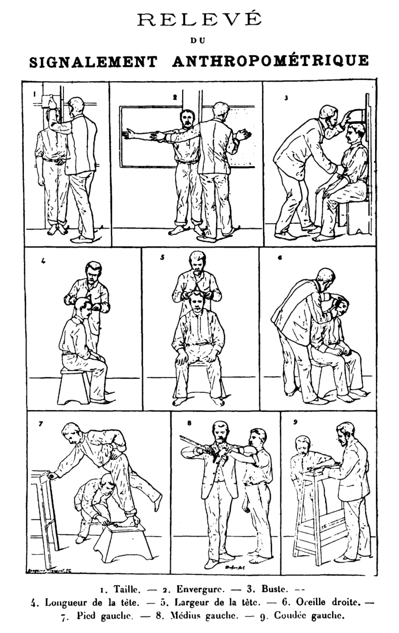 Bertillon - Signalement Anthropometrique.png
