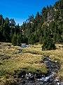 Bielsa - Barranco Trigoniero - Plana 03.jpg