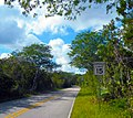 Big Cypress National Preserve SR 94.jpg