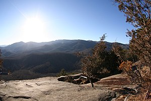 "DuPont State Forest - View from ""Big Rock""."