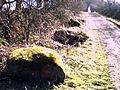 Big stones near Ballakew, St. Mark's - geograph.org.uk - 63307.jpg