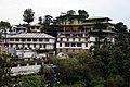BirG067-Dharamsala.jpg