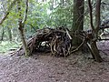 Bivouac in the woods at Ashridge - geograph.org.uk - 977439.jpg