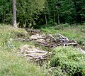 Bixby-State-Preserve Clayton-County,-Iowa Sunday,-September-4,-2011 d.jpg