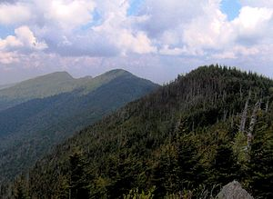 Black Mountains (North Carolina) - Cattail Peak (left), Balsam Cone (middle), and Big Tom (right), viewed from Mount Craig