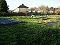 Blackmore and Brentvale allotments - geograph.org.uk - 1068086.jpg
