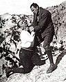 Blind Husbands (1919 film), publicity still. Universal Pictures. Erich von Stroheim, director.jpg