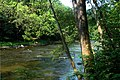 Bluestone National Scenic River.jpg