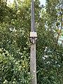 Boîtier Fibre Optique BRA 01343 01859 Route Bâgé St Cyr Menthon 1.jpg