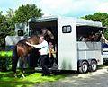 Boeckmann traveller horse trailer.jpg