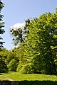 Boholiuby Lutskyi Volynska-Pershotravnevyi park-view from east-2.jpg