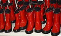 Boots - Flickr - ms.Tea.jpg