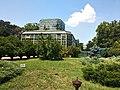 Botanical Garden Bucharest.jpg